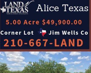 5 ACRES - CORNER LOT ALICE ,TX