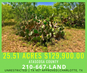 25.51 ACRES - Unrestricted In Atascosa County