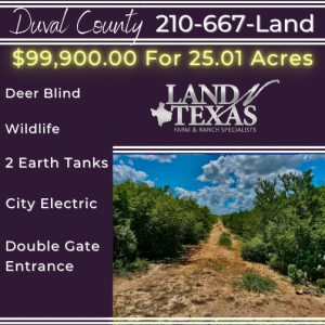 25.01 Acres - DUVAL COUNTY