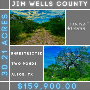 30.21 Acres Unrestricted with 2 Ponds