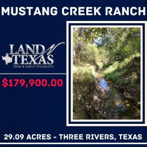 Unrestricted 29.09 Acres On Mustang Creek